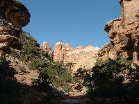 Needles & Canyons